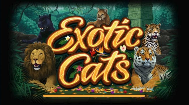 Quatro featuring the Video Slots Exotic Cats with a maximum payout of $106,000