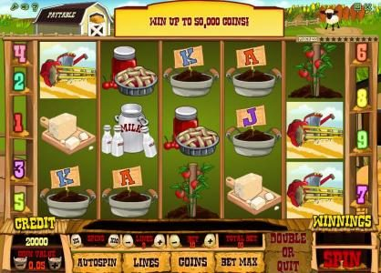 Farm Fair :: main game board featuring five reels and nine paylines