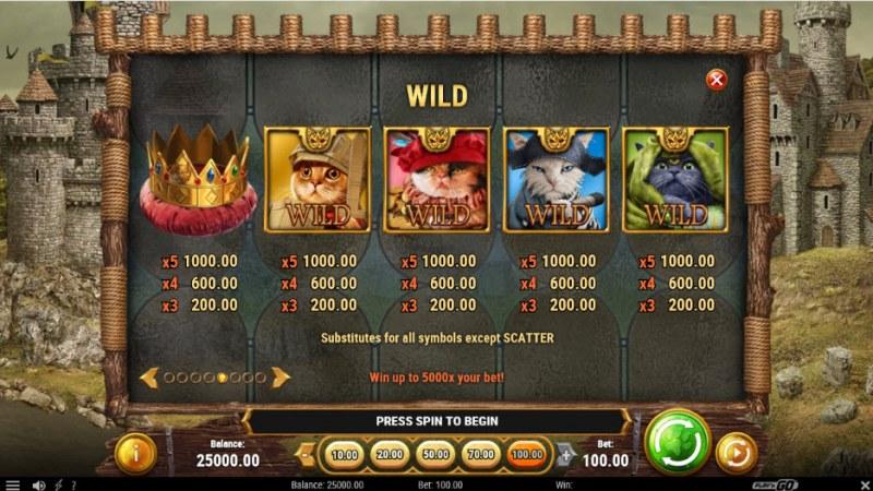 Feline Fury :: Wild Symbols Rules