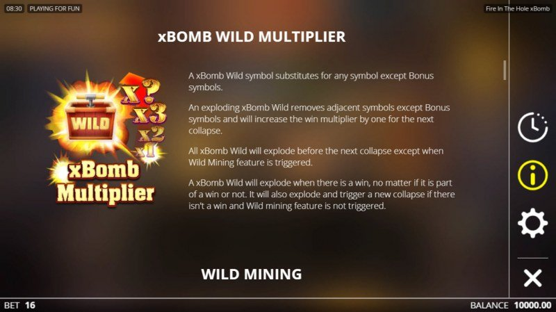 Fire in the Hole :: xBomb Wild Multiplier