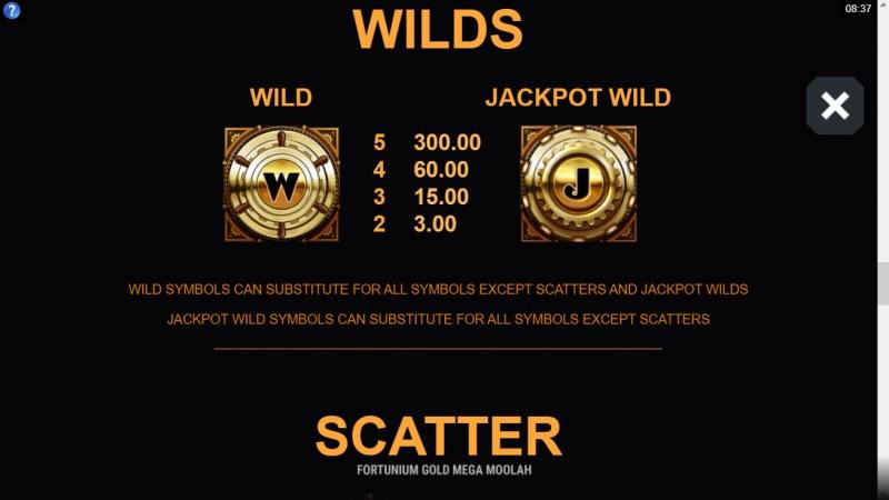 Fortunium Gold Mega Moolah :: Wild Symbol Rules