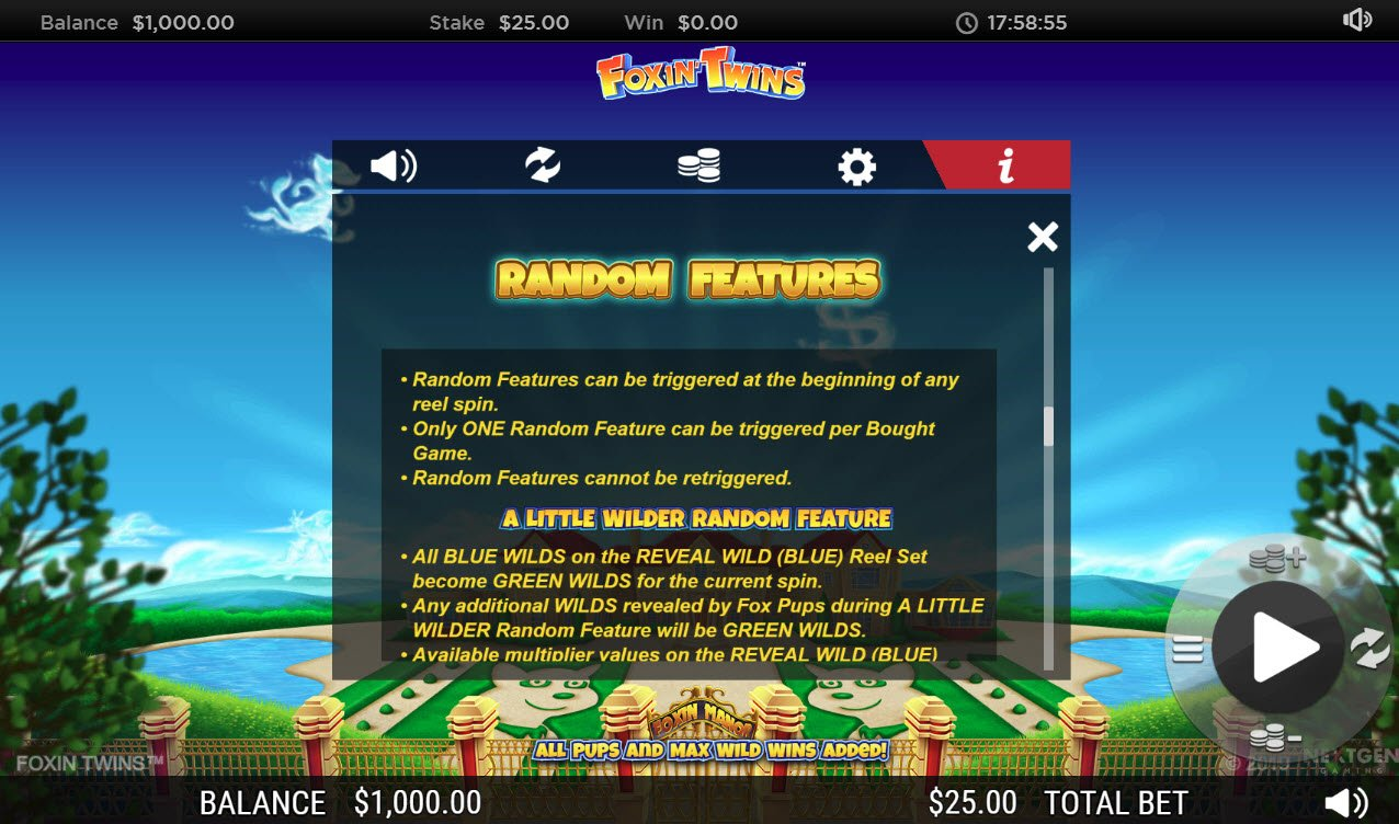Play slots at Play Million: Play Million featuring the Video Slots Foxin' Twins with a maximum payout of $6,250