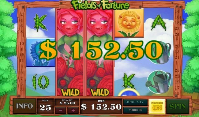Red Rose expanded wilds on reels 2 and 3 awards a 152.50 payout.