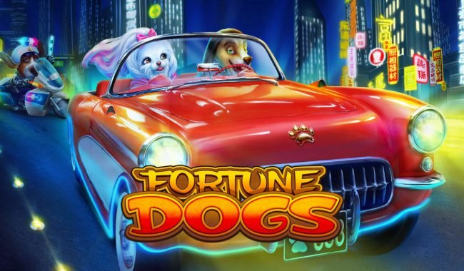 Fortune Dogs :: Introduction