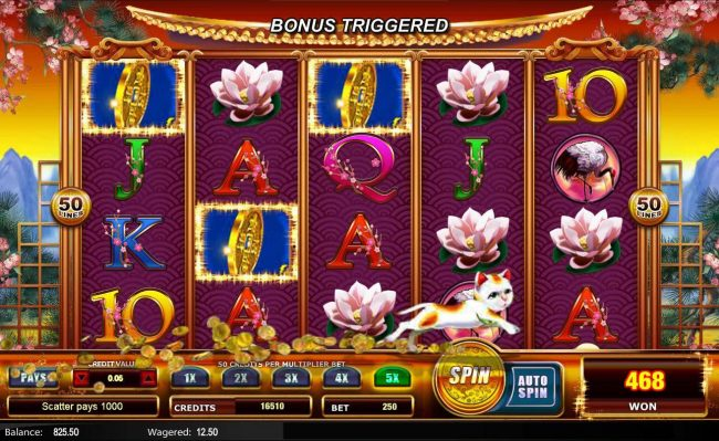 Come On featuring the Video Slots Fortune Pays with a maximum payout of $62,500