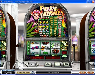Europlay featuring the Video Slots Funky Monkey with a maximum payout of $37.500