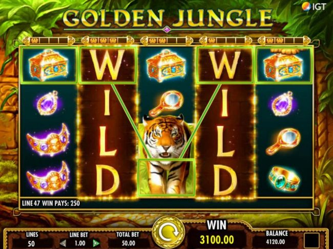 Stacked wilds trigger multiple winning combinations leading to a 3100.00 jackpot win.