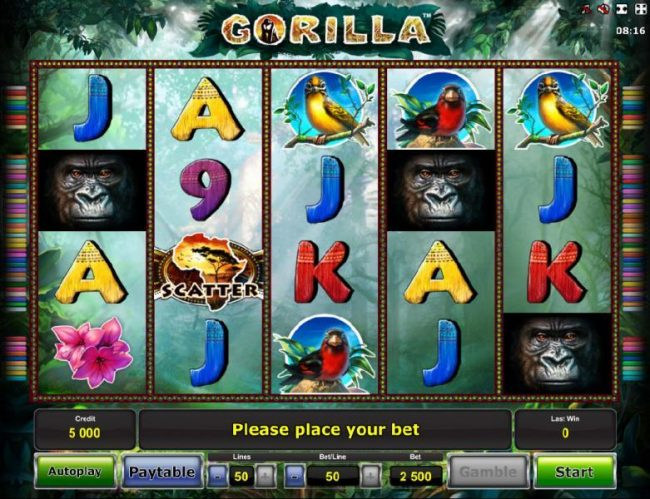 Main game board African safari theme, featuring five reels and 50 paylines with a $2,500,000 max payout