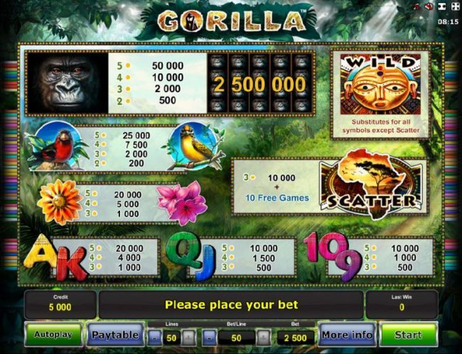 Slot game symbols paytable - high value symbols include a gorilla, a red bird and a yellow bird.