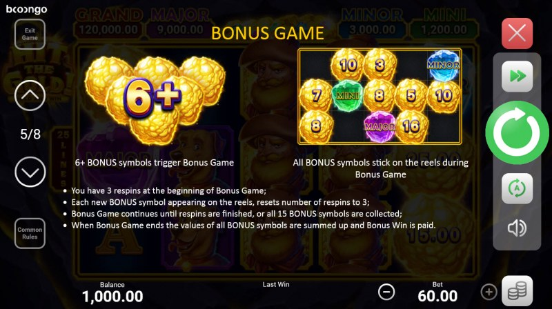 Hit the Gold! Hold and Win :: Bonus Feature