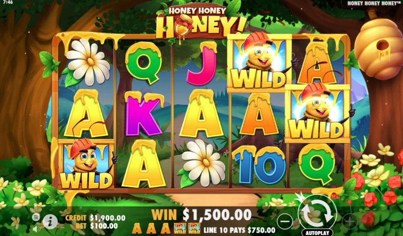 Honey Honey Honey :: Multiple winning paylines