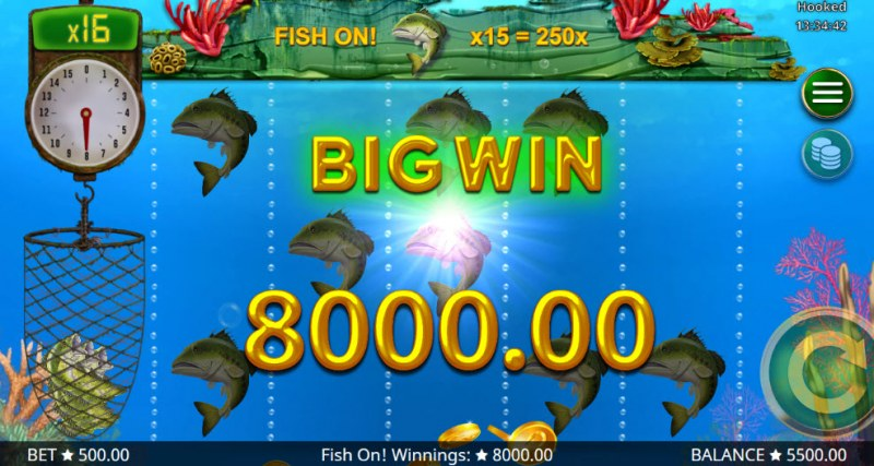 Hooked :: Big Win