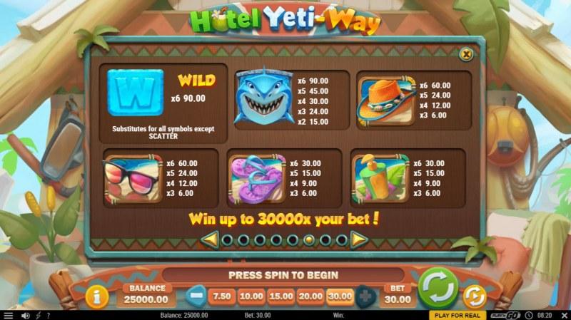 Hotel Yeti Way :: Paytable - High Value Symbols