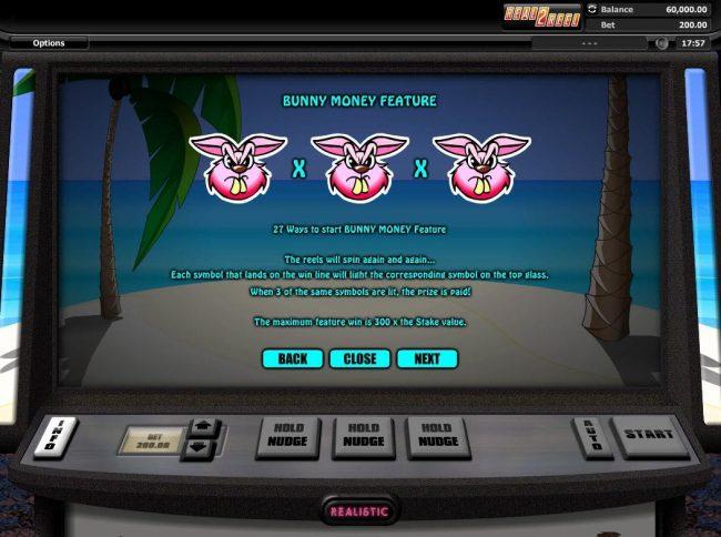 Hot Cross Bunnies :: Bunny Money Feature Rules - 27 Ways to start Bunny Money feature.