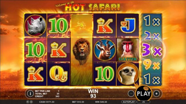 Hot Safari :: Another big win triggered by expanded wild symbol and 3x multiplier