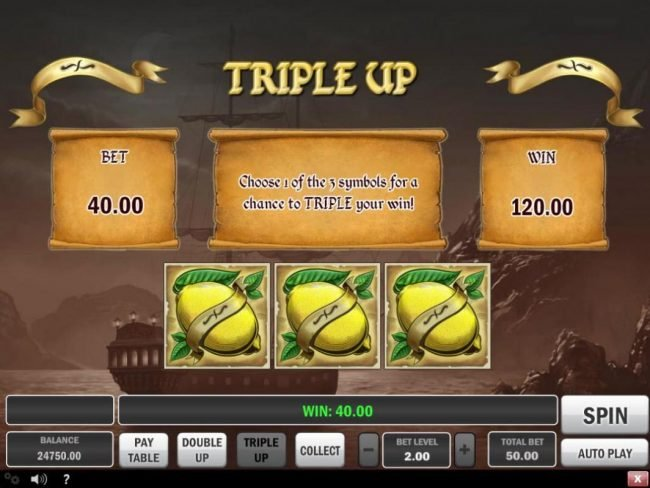 Hunt for Gold :: Triple Up Gamble Feature Rules
