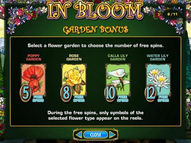 In Bloom :: Garden Bonus - Select a flower to choose the number of free spins.