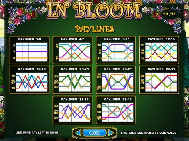 In Bloom :: Payline Diagrams 1-40
