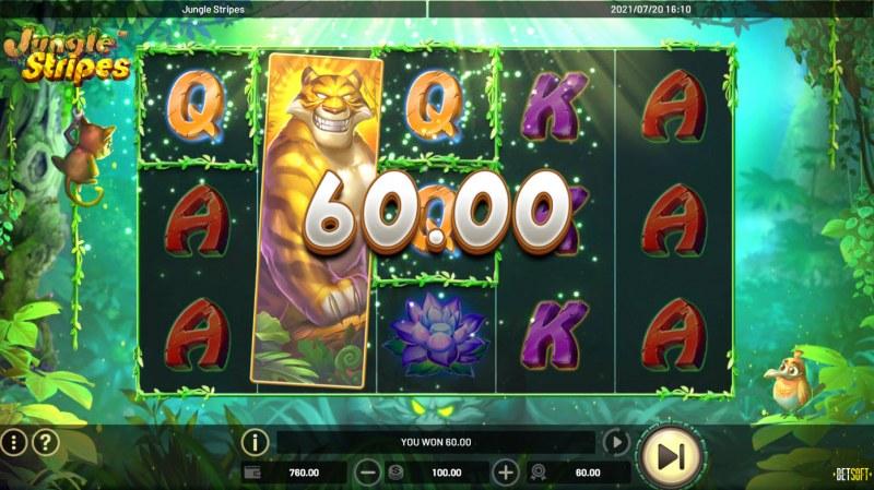 Jungle Stripes :: Multiple winning paylines