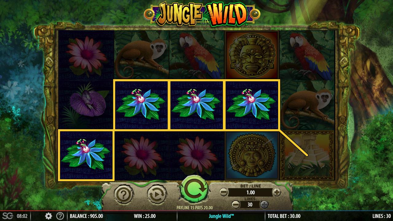 Jungle Wild :: Four of a kind