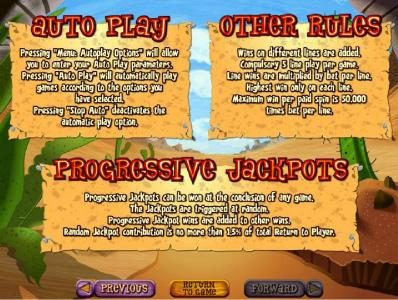 Auto Play, Progressive Jackpot and Other Rules