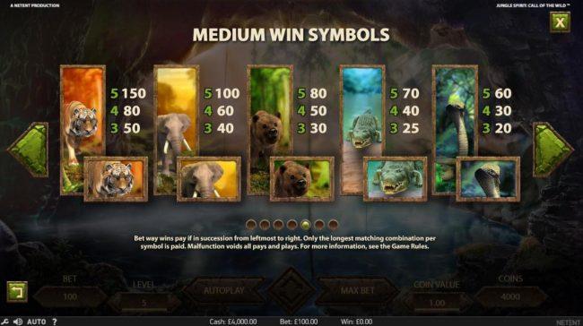 Medium Value Slot Game  Symbols Paytable.