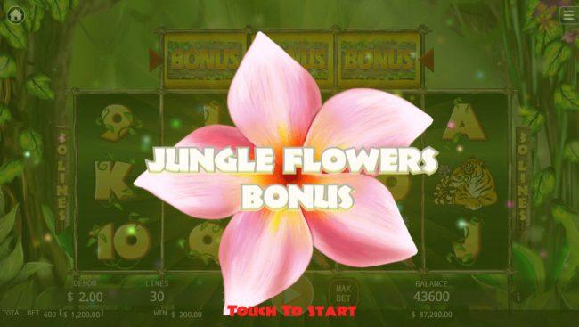 Jungle :: Jungle Flower Bonus