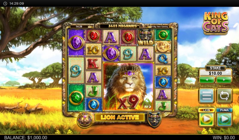 King of Cats :: Main Game Board