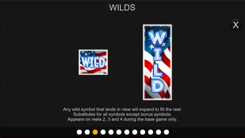 Liberty Cash Spins :: Wild Symbol Rules