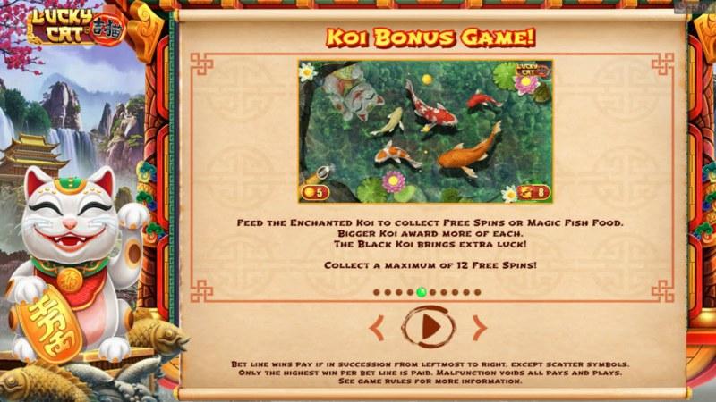 Lucky Cat :: Koi Bonus Game