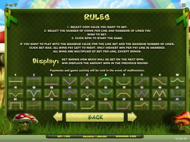 Lucky Leprechaun :: General Game Rules and Payline Diagrams 1-30