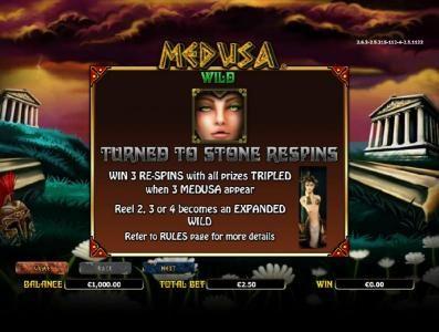 Medusa :: wild symbol rules