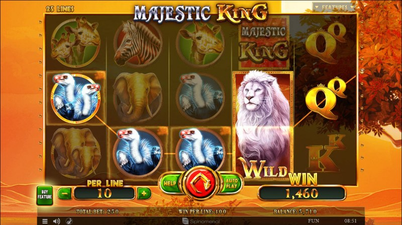 Majestic King :: Four of a kind