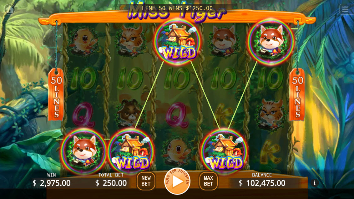Miss Tiger :: Multiple winning combinations leads to a big win
