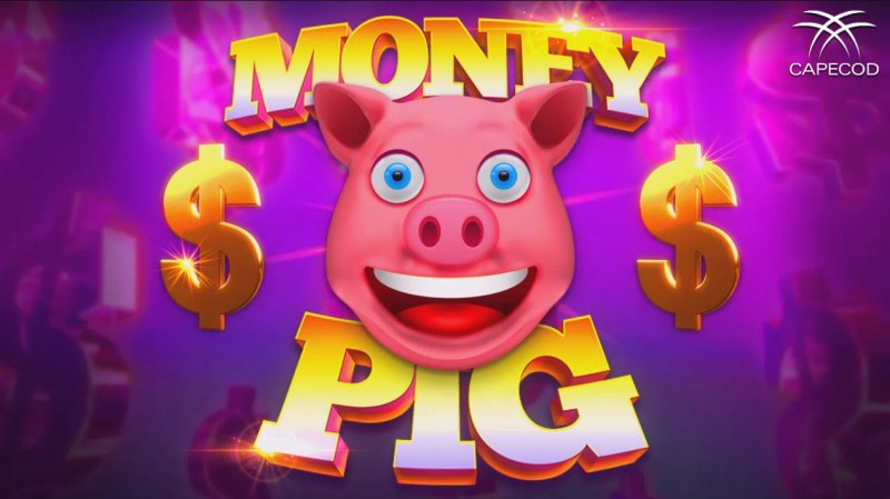 Money Pig :: Introduction
