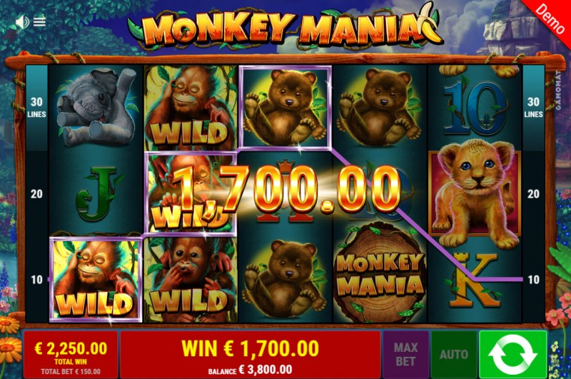 Monkey Mania :: Multiple winning paylines
