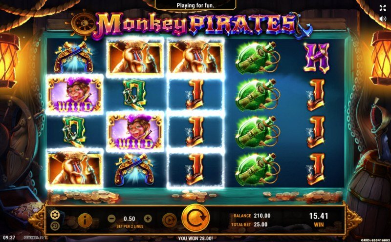Monkey Pirates :: Multiple winning paylines