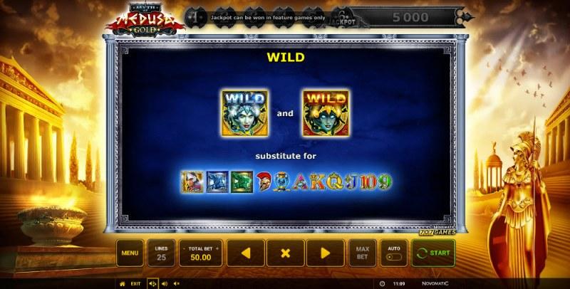 Myth of Medusa Gold :: Wild Symbols Rules