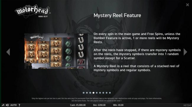 Mystery Reel Feature - On every spin in the main game and free spins, unless the Bomber feature is active, 1 or more reels will be mystery reels.