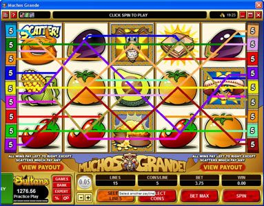Rich Reels featuring the Video Slots Muchos Grande with a maximum payout of $22,500