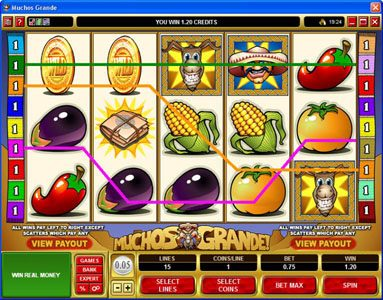 Winner Million featuring the Video Slots Muchos Grande with a maximum payout of $22,500