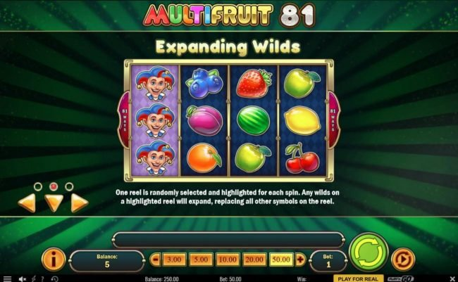 Play slots at Neder: Neder featuring the Video Slots Multifruit 81 with a maximum payout of $10,000