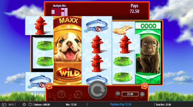 OMG! Puppies :: Multiple winning paylines