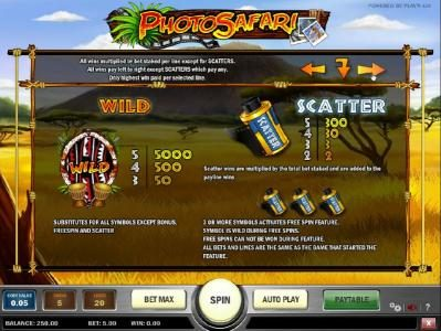 how to play wild and scatter with paytables
