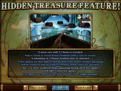 Hidden Treasure Bonus Feature rules