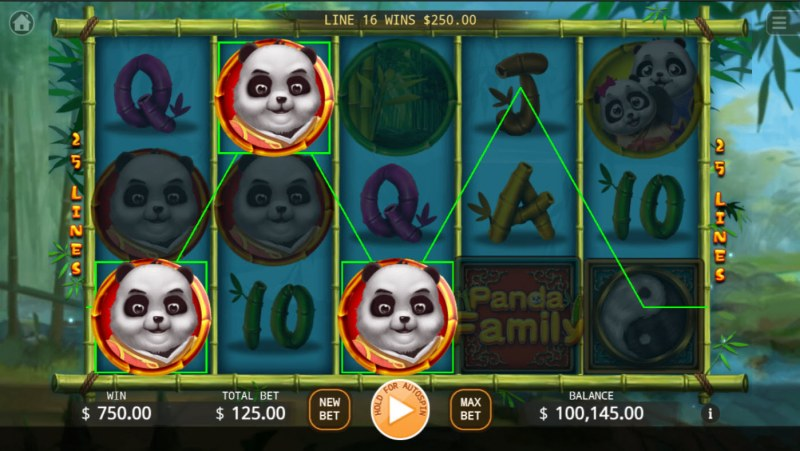Panda Family :: Multiple winning paylines