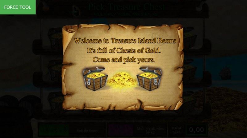 Pirates Fortune :: Bonus game triggered