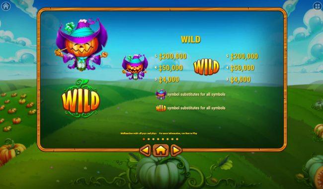 Pumpkin Patch :: Wild Symbol Rules