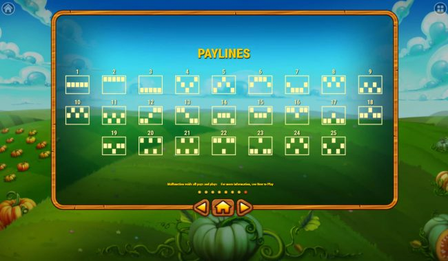 Pumpkin Patch :: Paylines 1-25