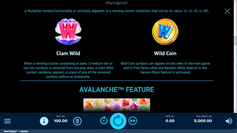 Reef Raider :: Wild Symbol Rules